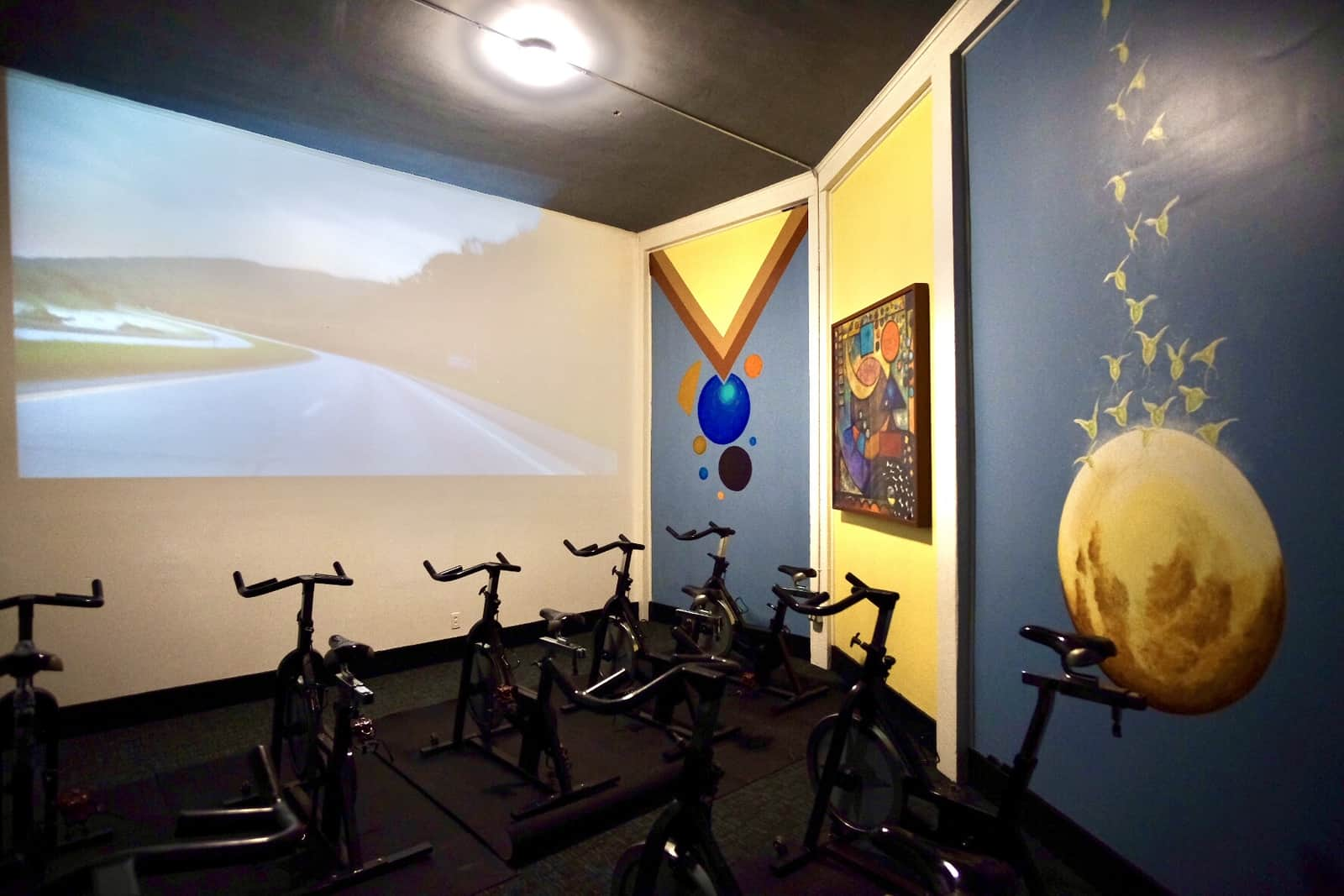 room with stationary bikes and abstract paintings on the wall